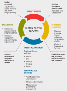 Federal Human Capital Management