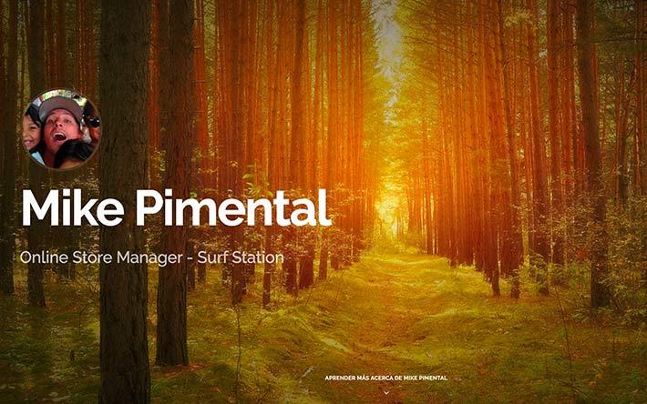 Online Store Manager Ejemplo de sitio web de reanudación